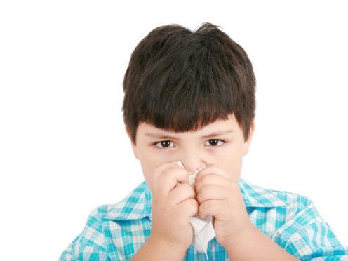 picor en la nariz